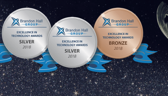 2018 Brandon Hall Excellence Awards: Three Cheers for Three Awards!