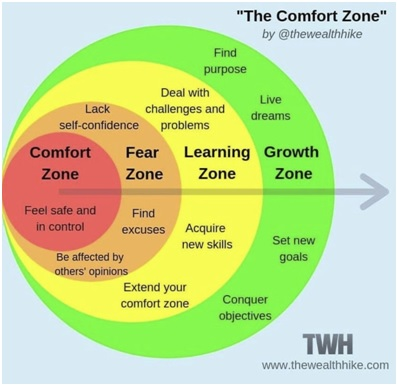 the comfort zone internal image